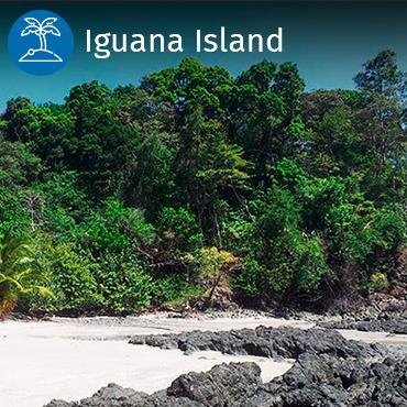 Iguana island visits